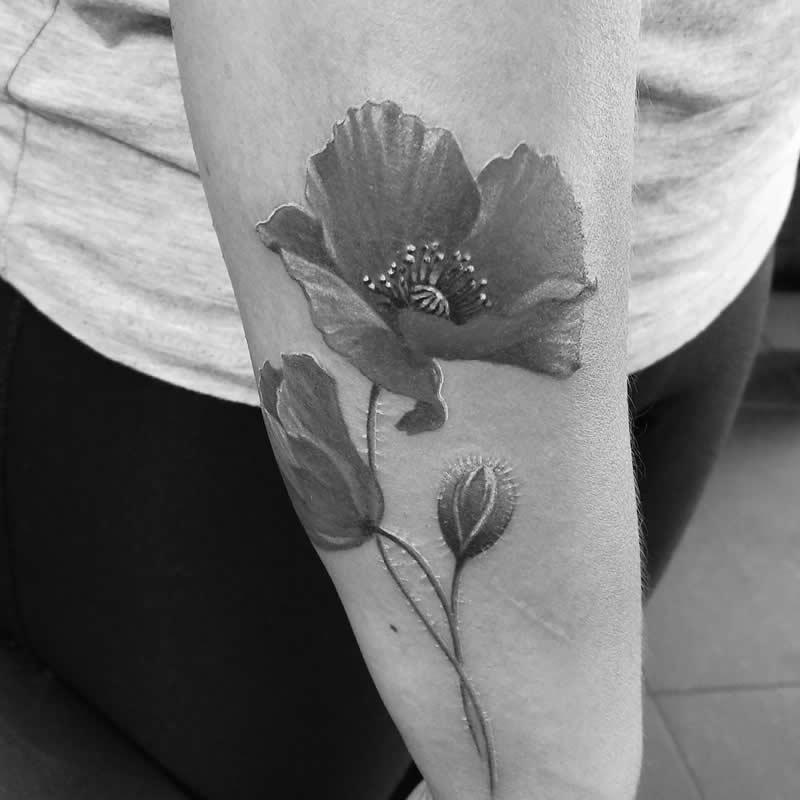tatto_roos_zw